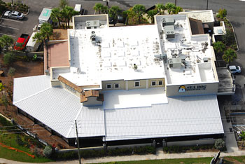 brewery roof sm